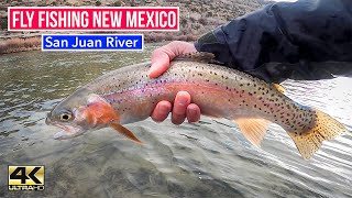 FIRST TIME IN NEW MEXICO FLY FISHING THE SAN JUAN RIVER Winter fly fishing 4k