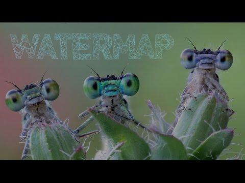 WATERMAP 432HZ –