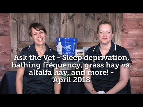 Ask the Vet - Sleep deprivation, bathing frequency, grass vs alfalfa hay, and more! - April 2018