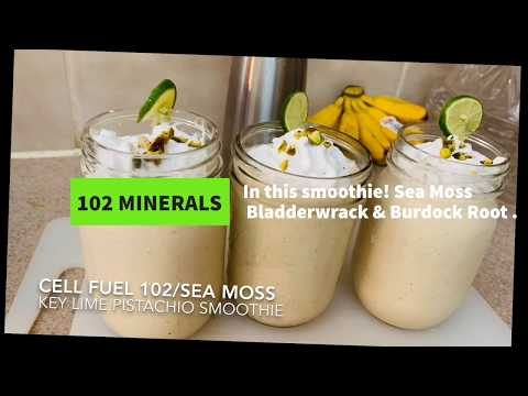 Sea Moss | Bladderwrack | Burdock Root Powder Herbal Blend
