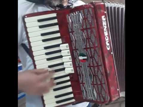 Acordeon Cadenza 48 baixos - Território da Música