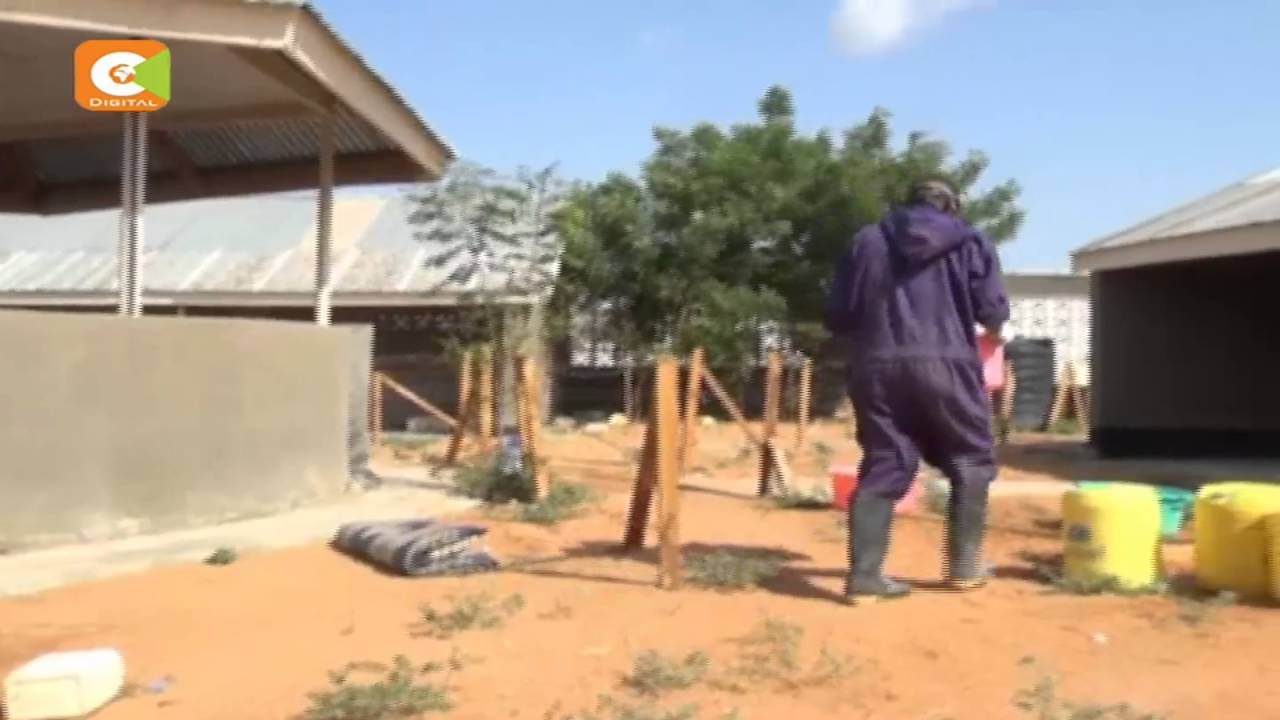 Garissa staring at fresh cholera outbreak as five hospitalized