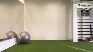 Office Fit (30min) Mobility, Kraft, Dehen