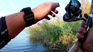 Рыбалка и приятное времяпровождение на реке Аксай