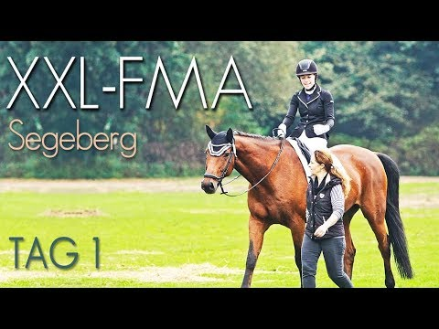 [XXL FMA] Vielseitigkeit CIC* - Segeberg 2017 - TEIL 1
