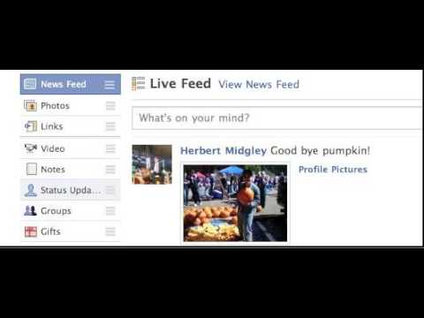 The Facebook News Feed / Live Feed Fix Status Updates