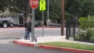 Crosswalk Trap