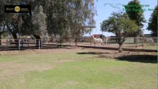 19330 Via De Olivos Queen Creek, AZ. Horse Property For Sale