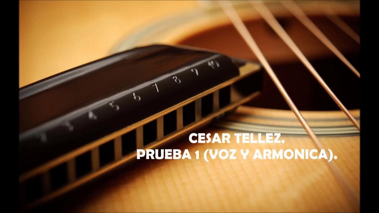 Prueba 1 (Armonica y voz).