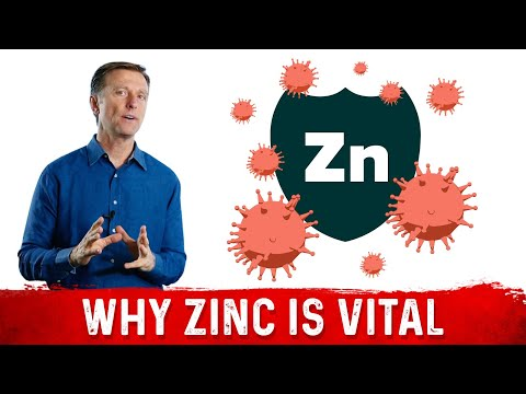 Importance of Zinc for the Immune System