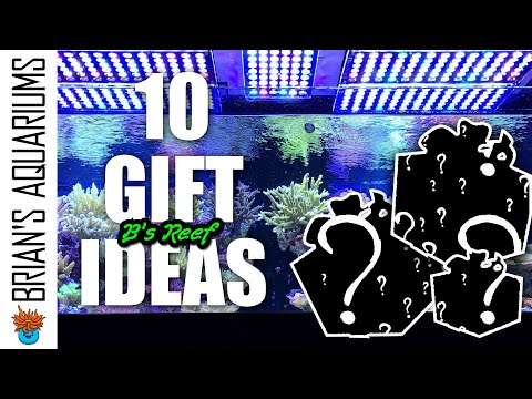 10 Gift Ideas For The Saltwater Aquarium Hobby - 2019