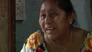 Gambar cover Sobada: El don de las parteras mayas