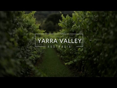 Travel Guide To Yarra Valley Australia