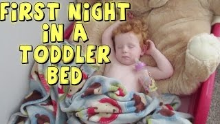 FIRST NIGHT IN A TODDLER BED