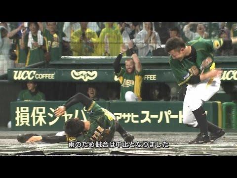 【阪神】今成、メッセ、伊藤隼 雨の中のファンサービス! 雨天中止 2014.8.3