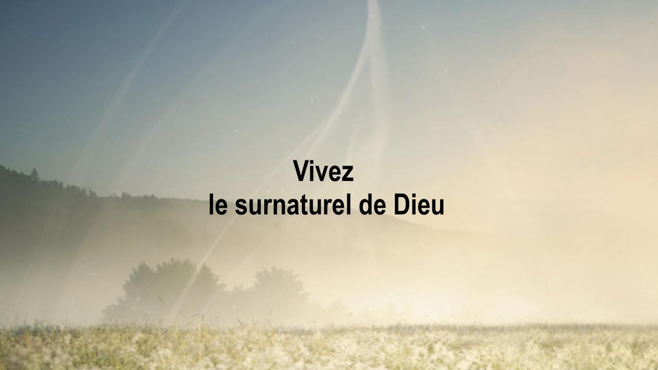 La guérison en Jésus (2) - École de Ministère Surnaturel Francophone - Pst David Théry