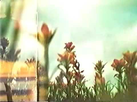 Nine Inch Nails - The Fragile (Album Video Promo)