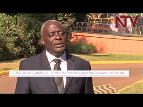 Sugar imports  anger Busoga, Bunyoro cane growers