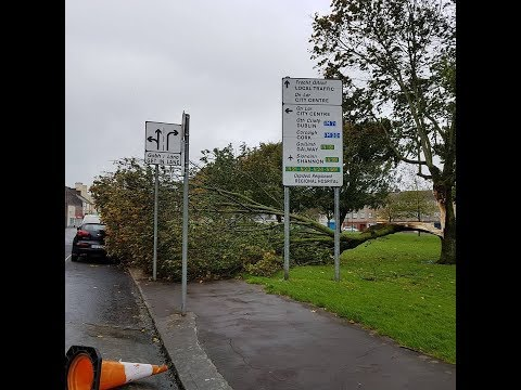 How was storm Ophelia in Ireland, Limerick City