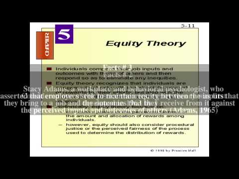 Equity theory Top # 5 Facts