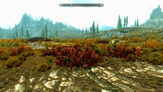 The Elder Scrolls V: Skyrim (PC) Review
