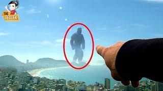 9 การค้นพบ ยักษ์ตัวจริง ที่อาจมีชีวิตอยู่บนโลก (สัตว์ประหลาดยักษ์ Godzilla)