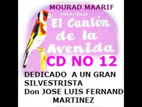 CD CANTON NO12