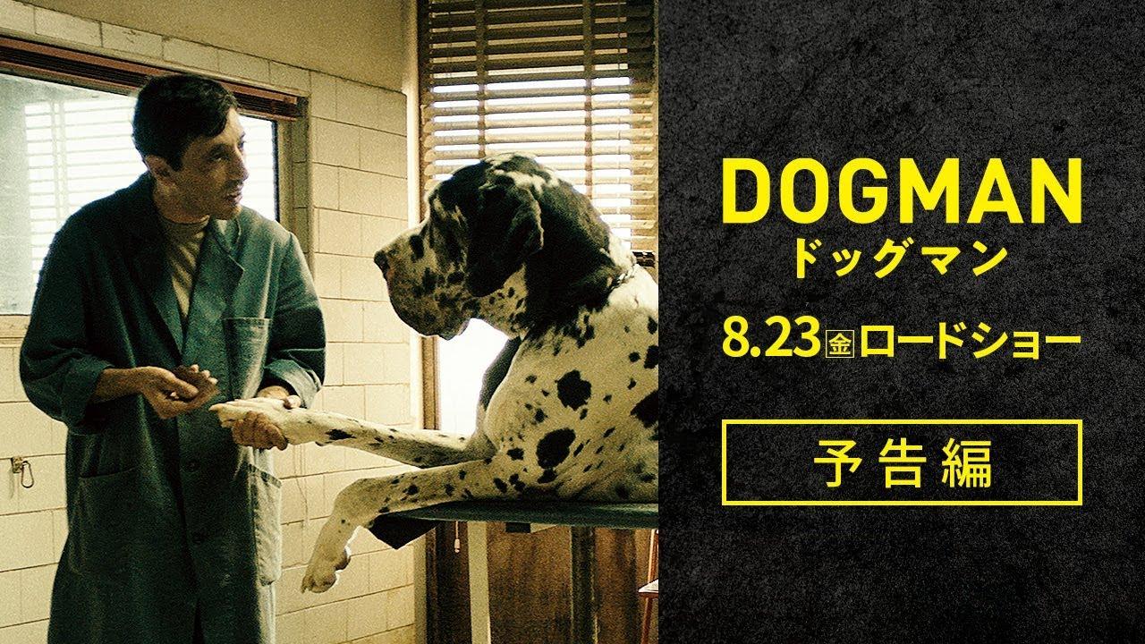『ドッグマン』本予告編