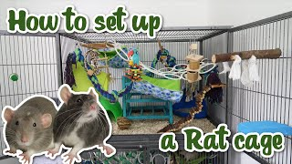 How to set uṗ a Rat cage
