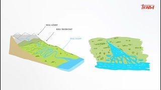 Nad wodą (odc.2): Wody stojące i wody płynące