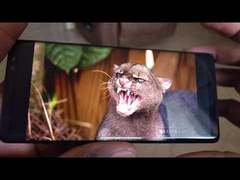 How to Watch HDR video on the Galaxy Note 8