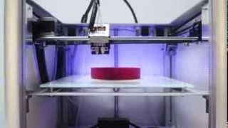 видео Купить 3D принтер Leapfrog Creatr 2