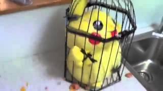 HowToBasic - Cómo Atrapar un Pokemon [Improvisación]