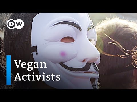Vegan activists unmask the cruelty of animal agriculture | DW Stories