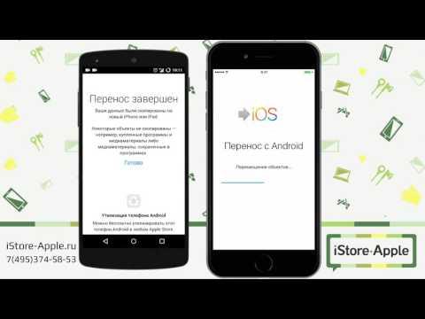 Перенос данных с Android на iPhone (Как перенести данные с Андроид на Айфон)