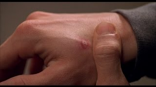 Spider-Man (2002) The Day that Peter Parker got bitten by a Spider