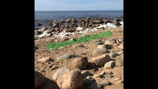 Прибалтийские морские камни для аквариума