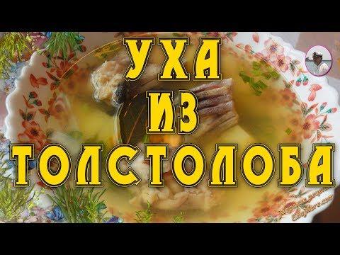 Вкусный рыбный суп. Уха из толстолобика от Petr de Cril'on  & SonyKpK