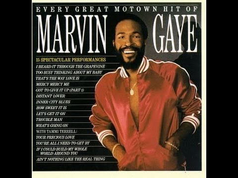 Marvin Gaye /   You're A Wonderful  One