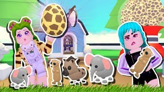 🦁NEW SAFARI PETS, OPENING NEW OWN ADOPTMe🦁- ROBLOX