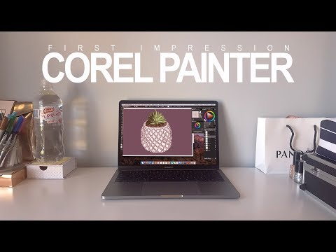 COREL PAINTER 2019 | First Impression & Review