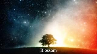 Indigo Rain - Blossom