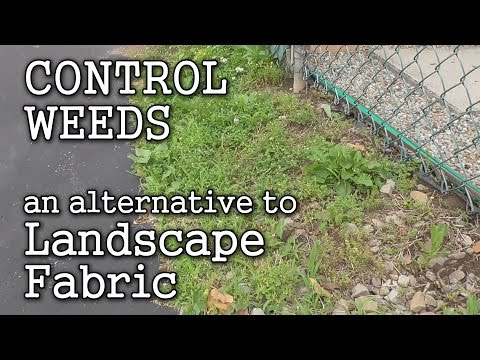 Landscape Fabric Pros & Cons Finding an Alternative thru Sheet Mulching for Weed Control