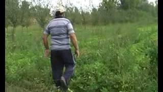 Kikiriki u Posavini (FTV)