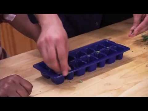 Generate Freezing Fresh Herbs in Ice Cube Trays Snapshots