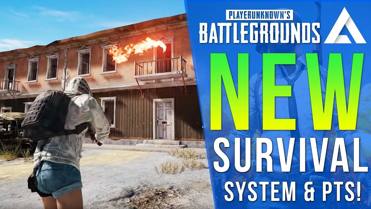 PUBG PS4/Xbox Update Info: Survival Mastery System, Player IDs, Crossplay PTS