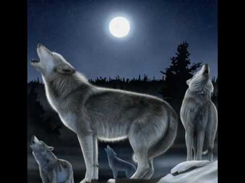 A Wolf Song: Spirit Wolves