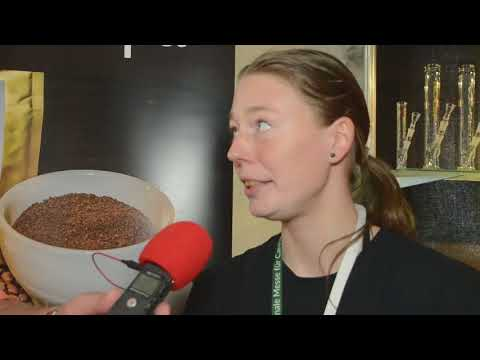 Mary Jane Berlin 2017 Interviews Hanfkaffee - Caffee Canapa