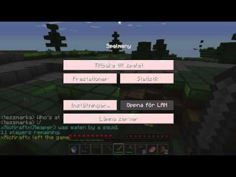 minecraft hg med Peter #1