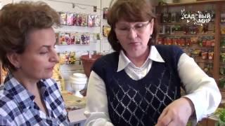 видео Консультации по садоводству